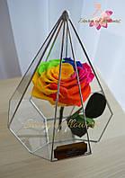 Роза во флорариуме в виде капли. Роза в колбе. Не завянет 5 лет. Радужная.