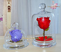 Мини роза в стеклянной колбе 12*12 см