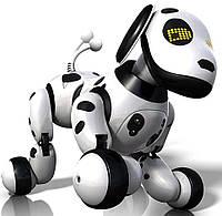 Интерактивная робособака  Zoomer