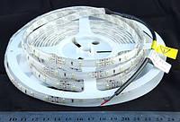 Светодиодная лента 3528-60-IP64-CWd-10-12 R8060BA, белый-холодный