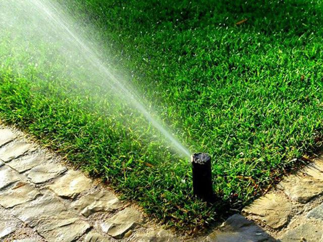 Полив газона норма воды