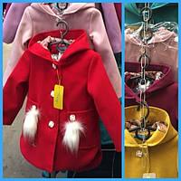 Куртки, комбинезоны для девочек