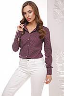 Стильная женская хлопковая рубашка с длинным рукавом принт бордовый горох