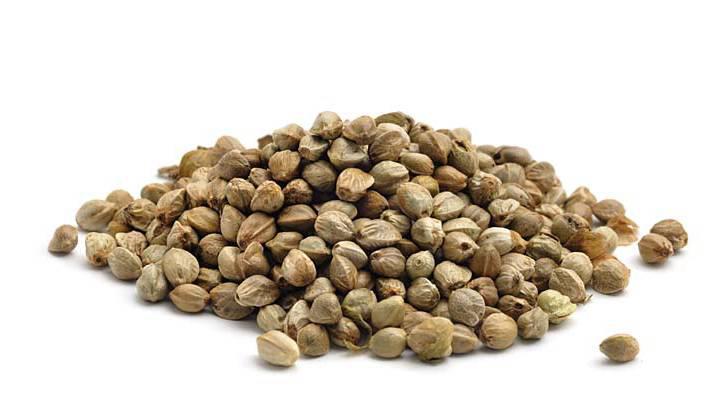 Семя конопли лечит тест полоска на марихуану обмануть