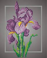 Схема для вишивки та вишивання бісером Бисерок «Іриси» (A4) (ЧВ- da11ed8777000