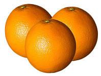Апельсины Испания
