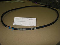 Ремень привода вентилятора ГАЗ 66 66-4201069