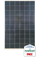 Солнечная батарея (панель)RSM60-6-275P/5BB 275Вт, поликристаллическая  Risen