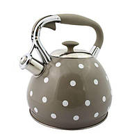 Чайник из нержавеющей стали TEO Серый горошек 3л.