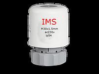 IMS електричний привід для гидрострелки, 220V різьблення 30x1.5