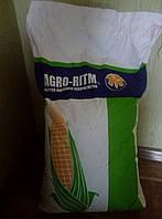 Семена кукурузы Монблан ФАО320