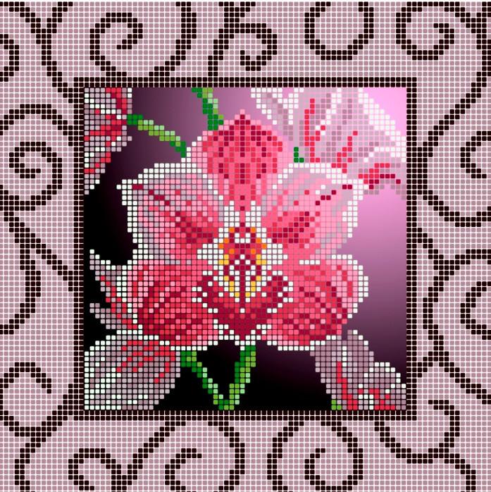 Схема для вишивки та вишивання бісером Бисерок «Орхідея (ЧВ-3157» (A4) 20x25 (ЧВ-3157(10))