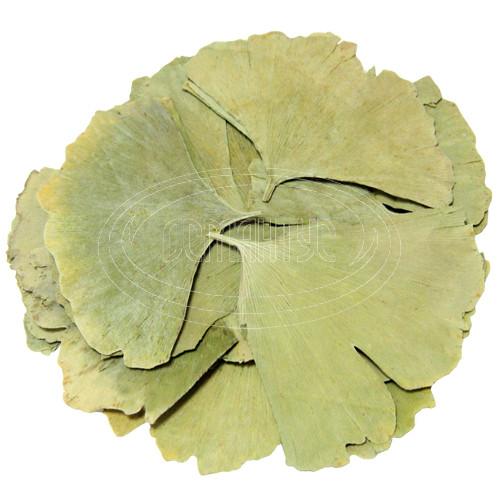 Листья Гинкго 500 грамм