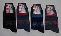 Носки женские х/б-стрейч, р.37-41. Опт 8 грн