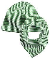 Шапка и шарф для мальчика  6-12 месяцев
