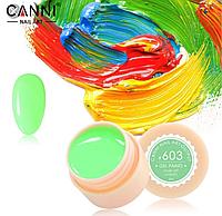Гель краска Canni №603 мятный