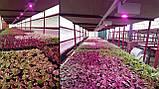 Фитолампа GrowStar 50W. Grow LED Lamp 50W Full Spectrum 380-840 nm., фото 10