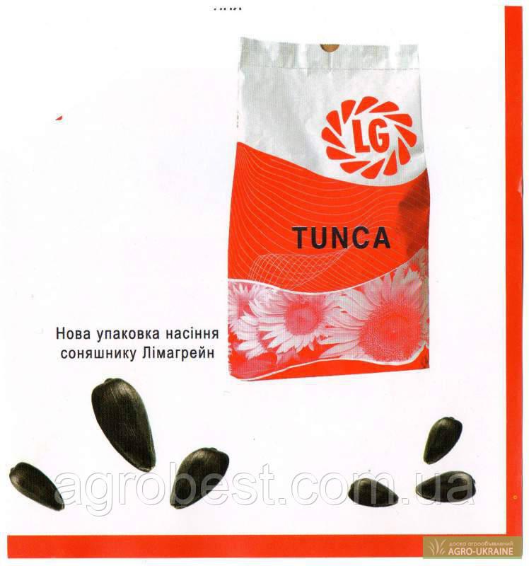 Подсолнечник   Limagrain Тунка / Лімагрейн Tunca