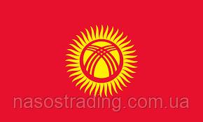 Авария на ТЭЦ: Столица Киргизии лишилась отопления из-за грязи в насосе