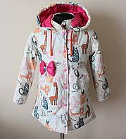 Детская куртка для девочек демисезонная, фото 1
