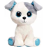 Мягкая игрушка FANCY Собачка глазастик (SBB0)