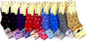 Носки детские, для девочек, 12 пар (цветные с рисунком) р.L (31-36) Корона