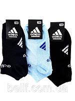 Носки детские, короткие, 12 пар (чёрный/голубой) 7-9, Ad