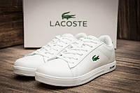 Кроссовки Lacoste Lerond кожаные белые кеды подростковые