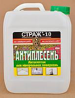 """Очиститель от плесени """"Страж-10"""" (готовый раствор) 5 л"""