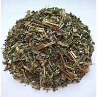 Иван-чай (кипрей узколистный) трава