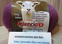 Полушерстяная пряжа (12%-кид мохер, 3%- шёлк, 42%- шерсть, 43%- акрил, 100г/ 640м) Valencia La Costa F266