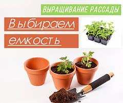 Выращивание рассады в домашних условиях: выбираем правильную емкость