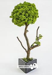 Fresh Tree 30 cm