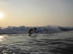Океан солнца, океан восторга! Это же Индийский океан!