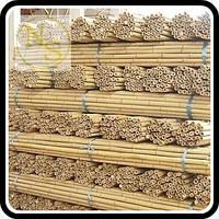 Бамбуковый ствол, опора L 3м. диам. 22-24мм.