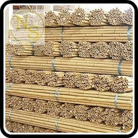 Бамбуковый ствол, опора L 2,1м. диам. 16-18мм.