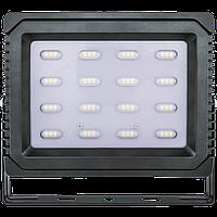 Светодиодный LED прожектор 50 Вт NFL Р 6500K 3600Lm IP65 Navigator