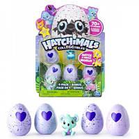 Hatchimals Хетчималс 4 яйца