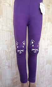 Лосины для девочек трикотажные Кошка-424-2, разные цвета