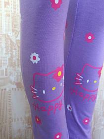 Лосины для девочек трикотажные hello kitty, разные цвета