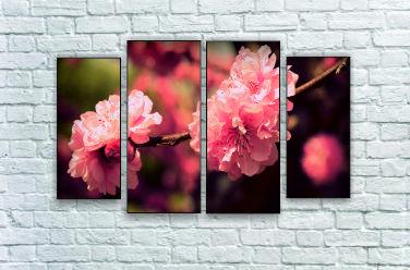 """Модульна картина """"Квітка ніжність"""""""