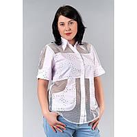 Блуза батал 98-Ж белая