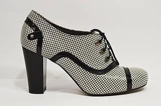 Ботинки женские кожаные черно-белые Avanti, фото 2