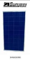 Солнечные батареи SUNRISE SOLARTECH SR-P636120 (поликристаллические)