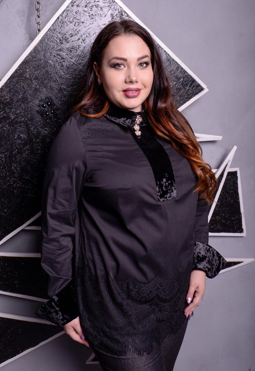 11b3cc1bf06 Нарядная блузка больших размеров Шарлотта черная  продажа