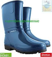 Резиновые сапоги женские (рабочая резиновая обувь) DEMAR Польша BDRAINNY G
