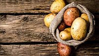 Cортировщик картофеля лука 3-5 т/ч Schouten Trio 75-4
