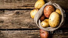 ∙ Бо сортувальник картоплі 3-5 т/год Schouten Trio