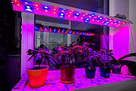 Фито LED Светильник линейный 90Вт ФАР (для овощей) 1150мм 51led/m (красный/синий-9/8) IP67 220V, фото 1