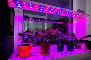 Фито LED Светильник IP67 220V LLP F3-90W 1150мм для овощей 51led (красный/синий-27/24) УКРАИНА
